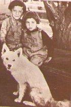 Henry Saroyan